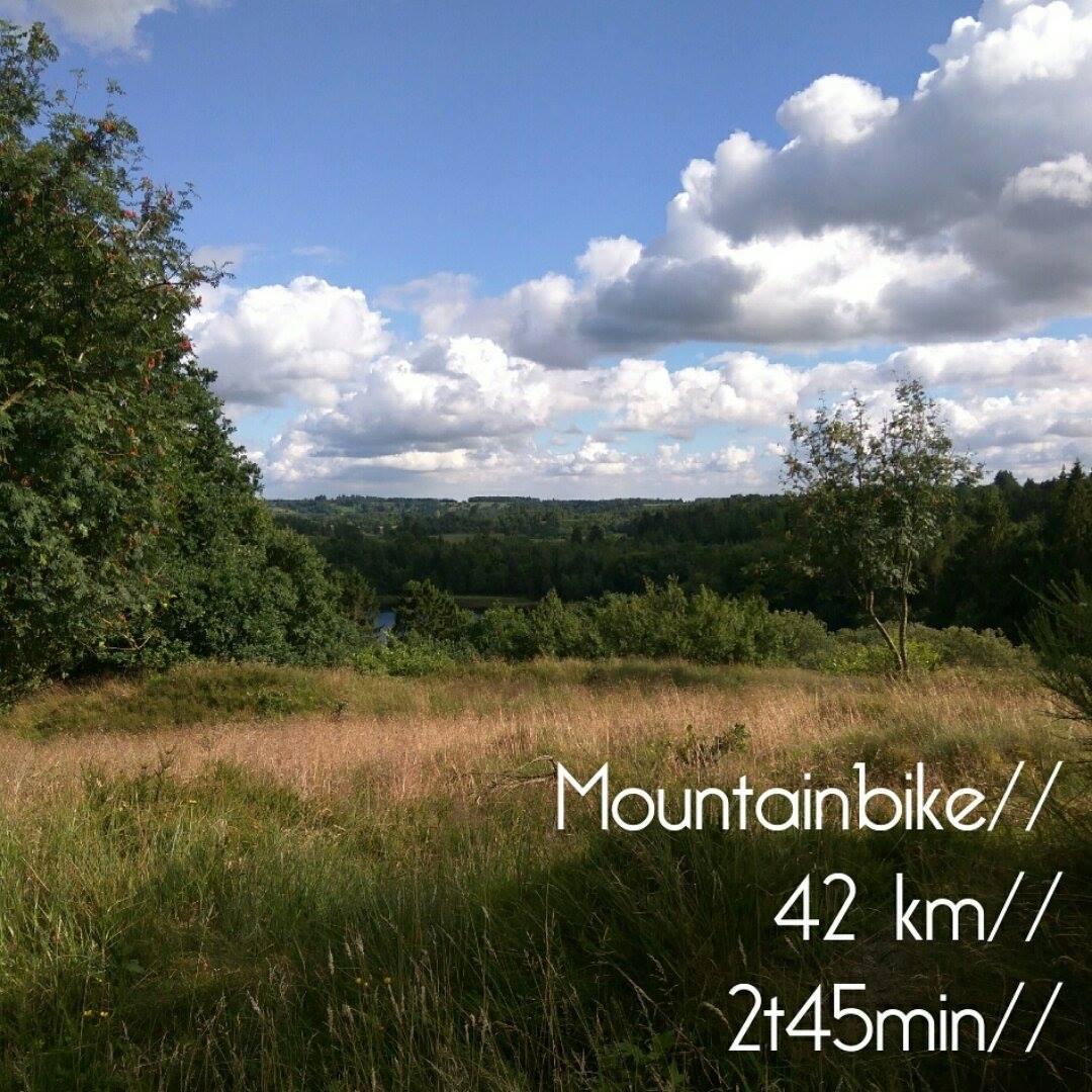 mountainbike_2